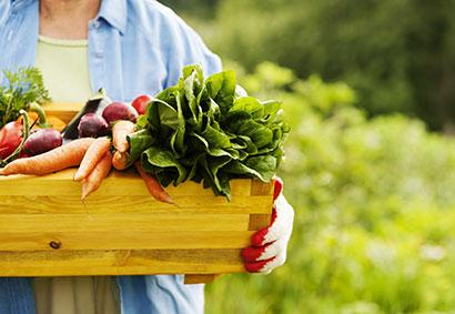Woman farmer holding box with vegetables